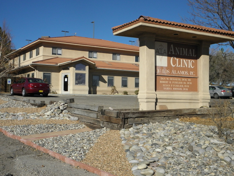 Los Alamos Animal Clinic Wired